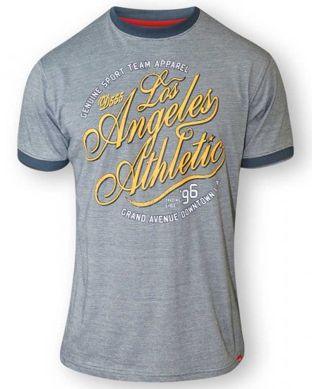 D555 IRVIN Athletic T-Shirt Grey - T-skjorter - Store T-skjorter - 2XL-8XL